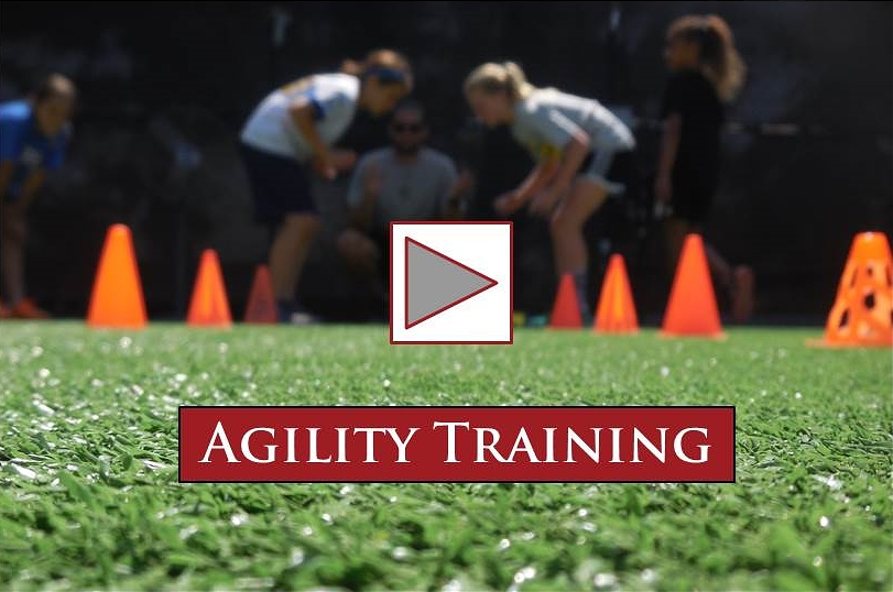 AgilityTraining video image V2 (2)